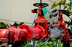 main valve with backflow